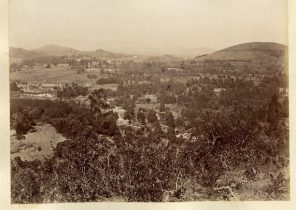 Ooty, from above the Gardens
