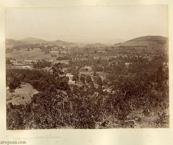 Ooty from above the Botanical Gardens