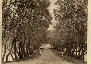 Ooty, through the Willow Bund